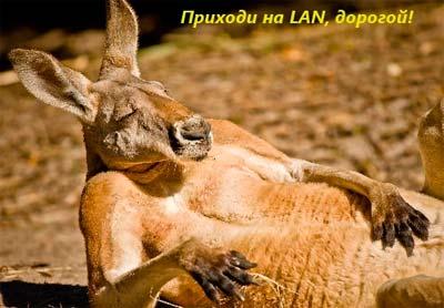 Приходи на LAN, дорогой!